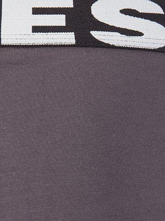 Diesel Grey/Blue/Pink 3 Pack Andre Seasonal Briefs