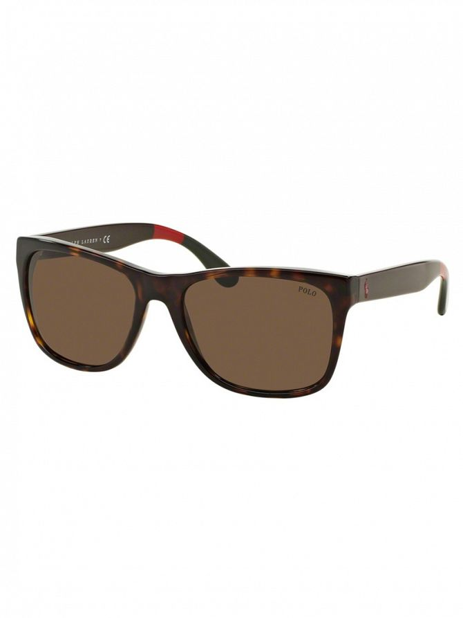 Polo Ralph Lauren Shiny Dark Havana Acetate Man Sunglasses